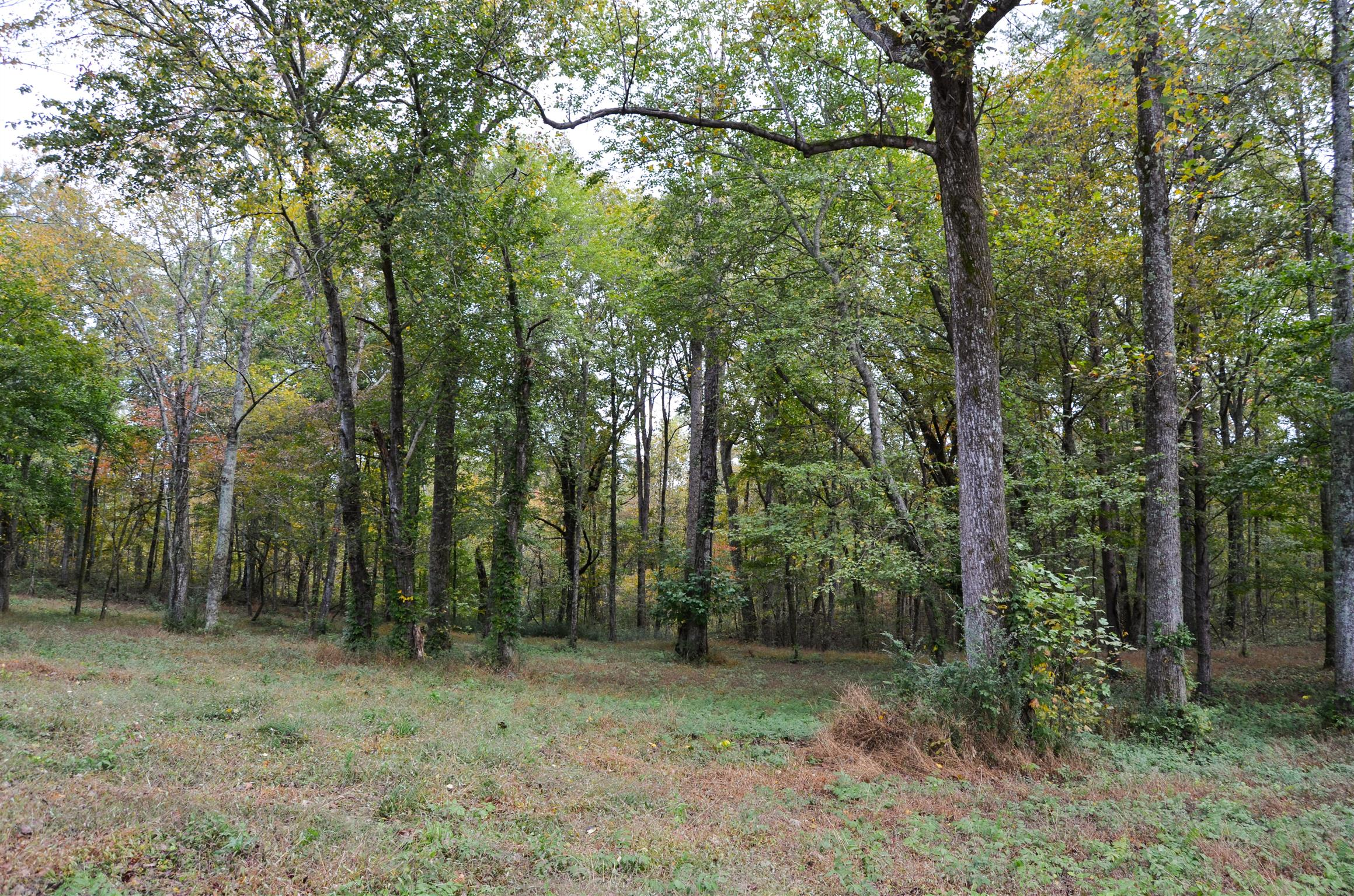 21 Woodmonte Dr, Monteagle, TN 37356 - Monteagle, TN real estate listing