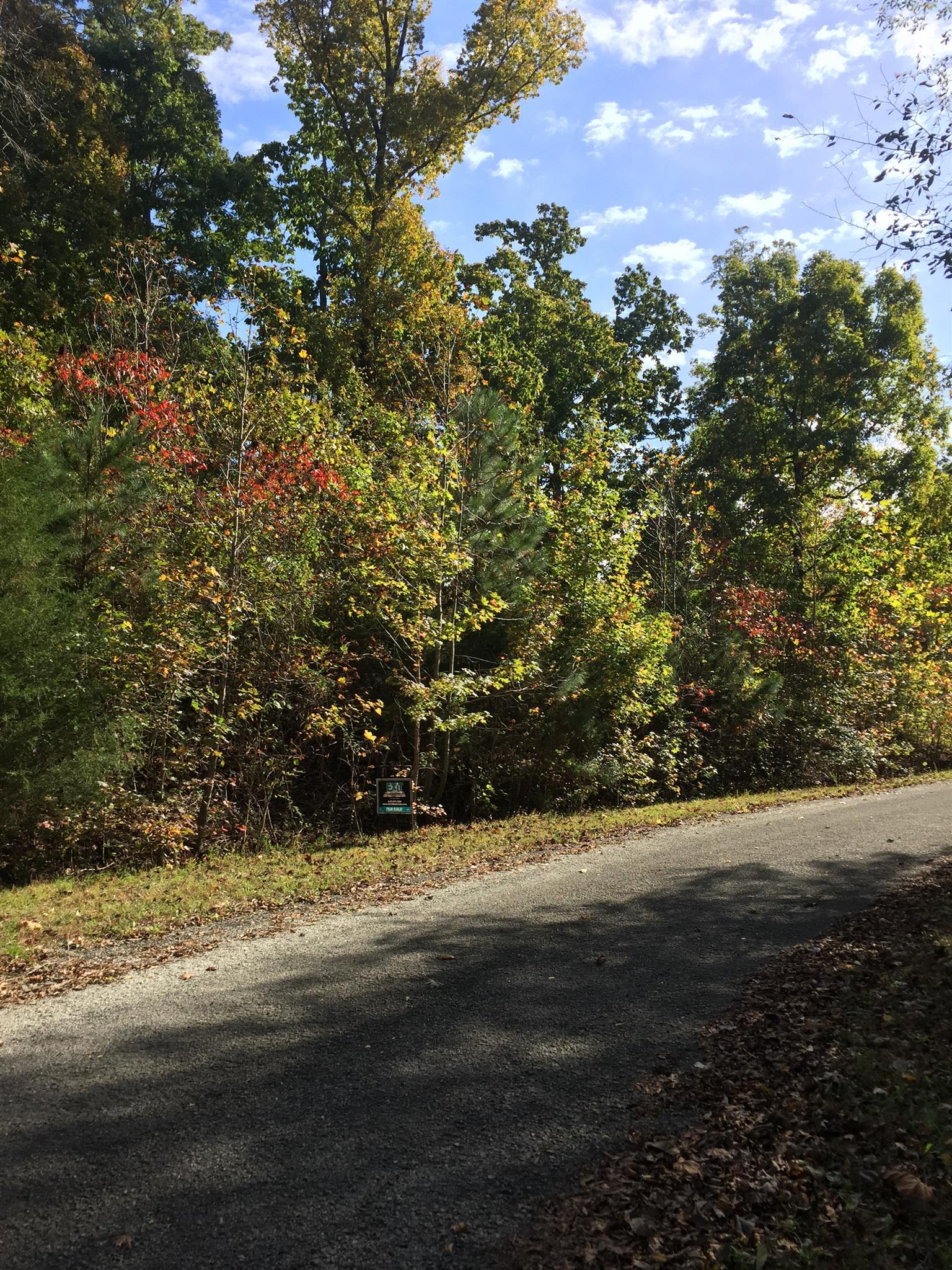 0 Links Bend Way, Springville, TN 38256 - Springville, TN real estate listing