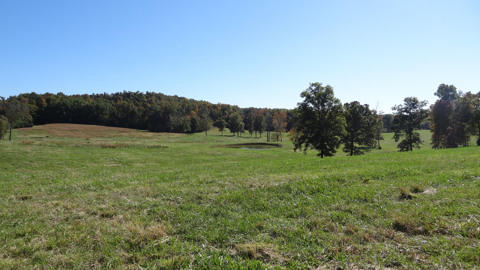 39.46 Acres Real Estate Listings Main Image