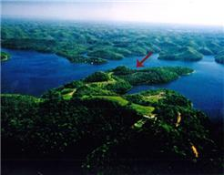84 Harbor Pointe Dr, Smithville, TN 37166 - Smithville, TN real estate listing