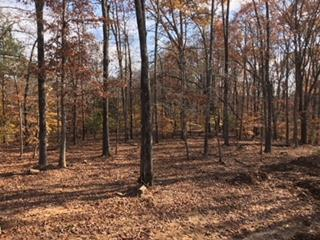 3017 Fairview Blvd Property Photo - Fairview, TN real estate listing