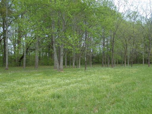 8 Woods Lake Rd, Decherd, TN 37324 - Decherd, TN real estate listing