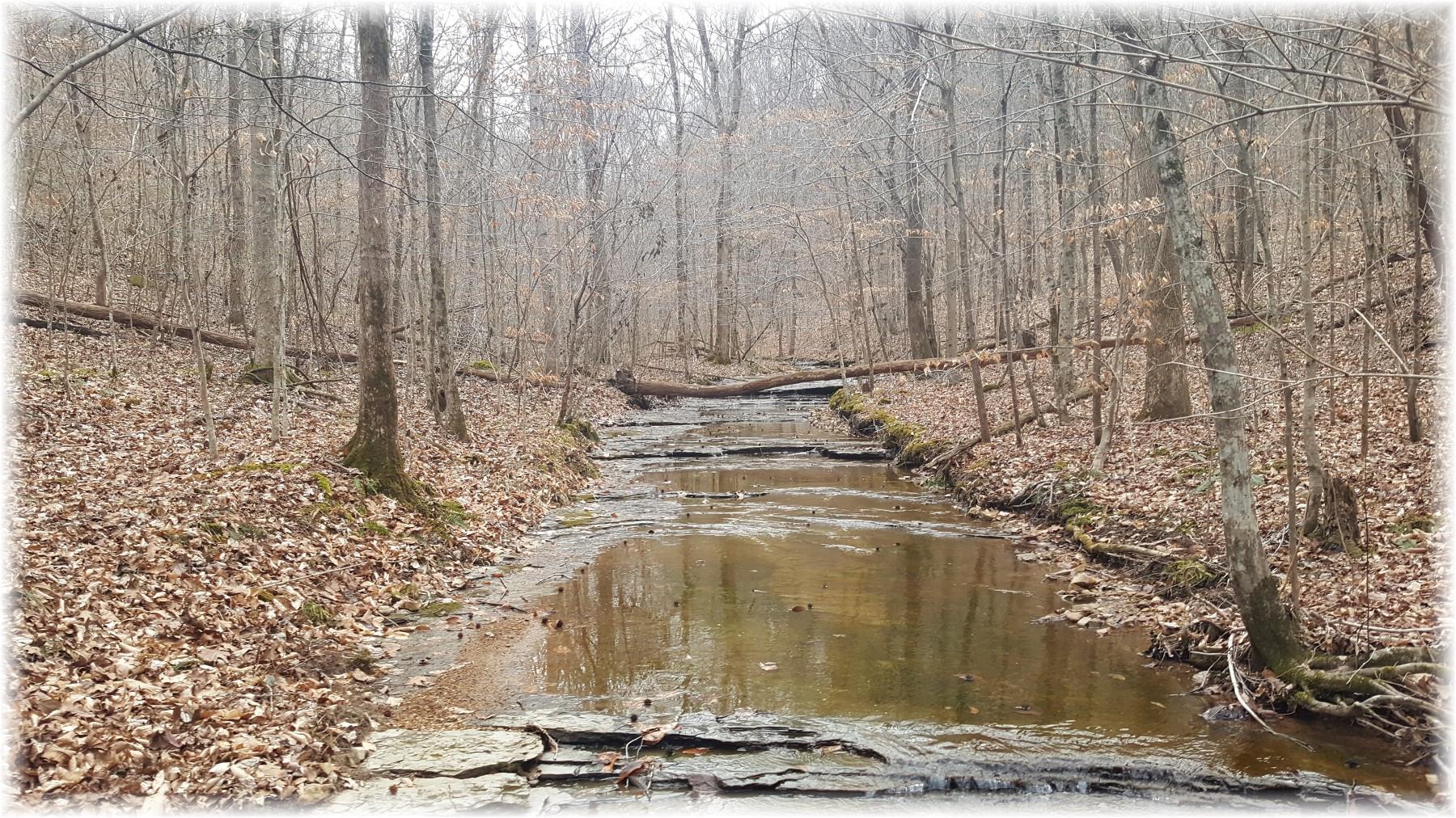 8364 Old Pond Creek Rd, Nashville, TN 37221 - Nashville, TN real estate listing