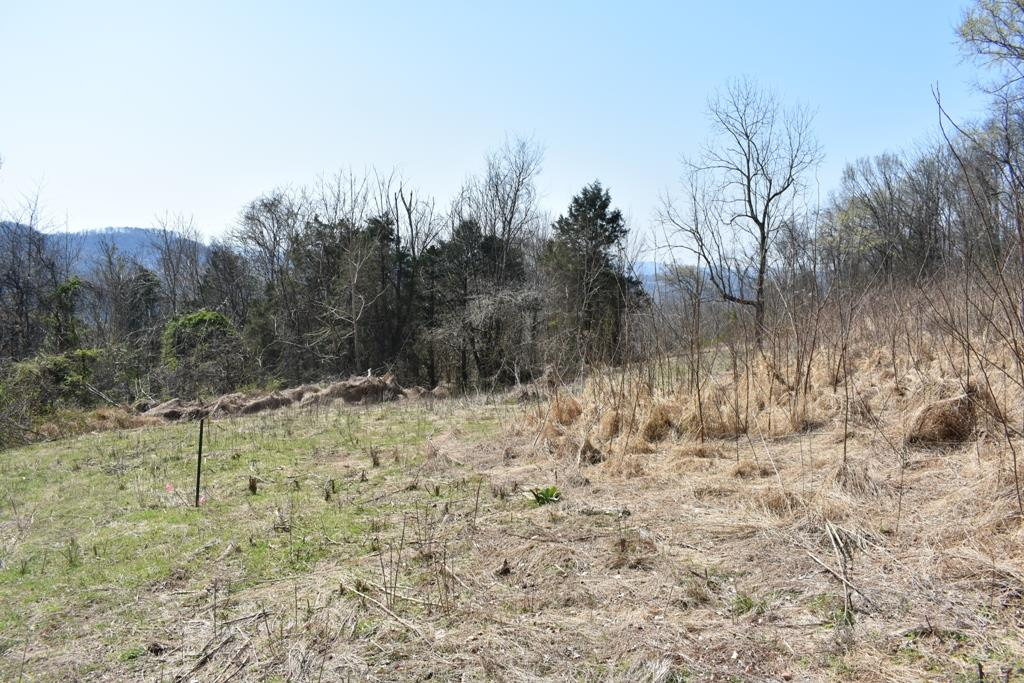 0 Sullivan Bend Rd Property Photo - Elmwood, TN real estate listing