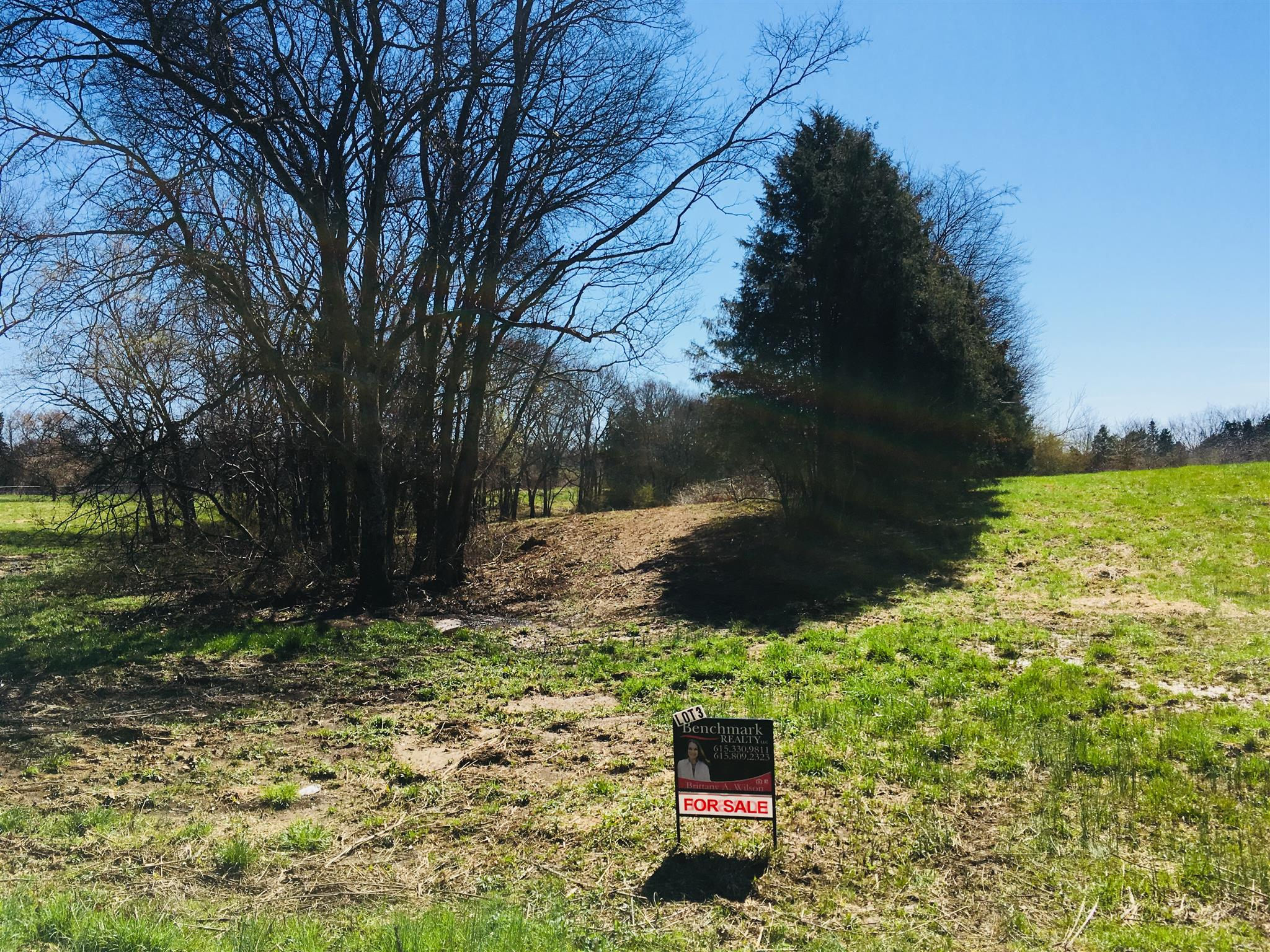 359 Eady Rd, Shelbyville, TN 37160 - Shelbyville, TN real estate listing