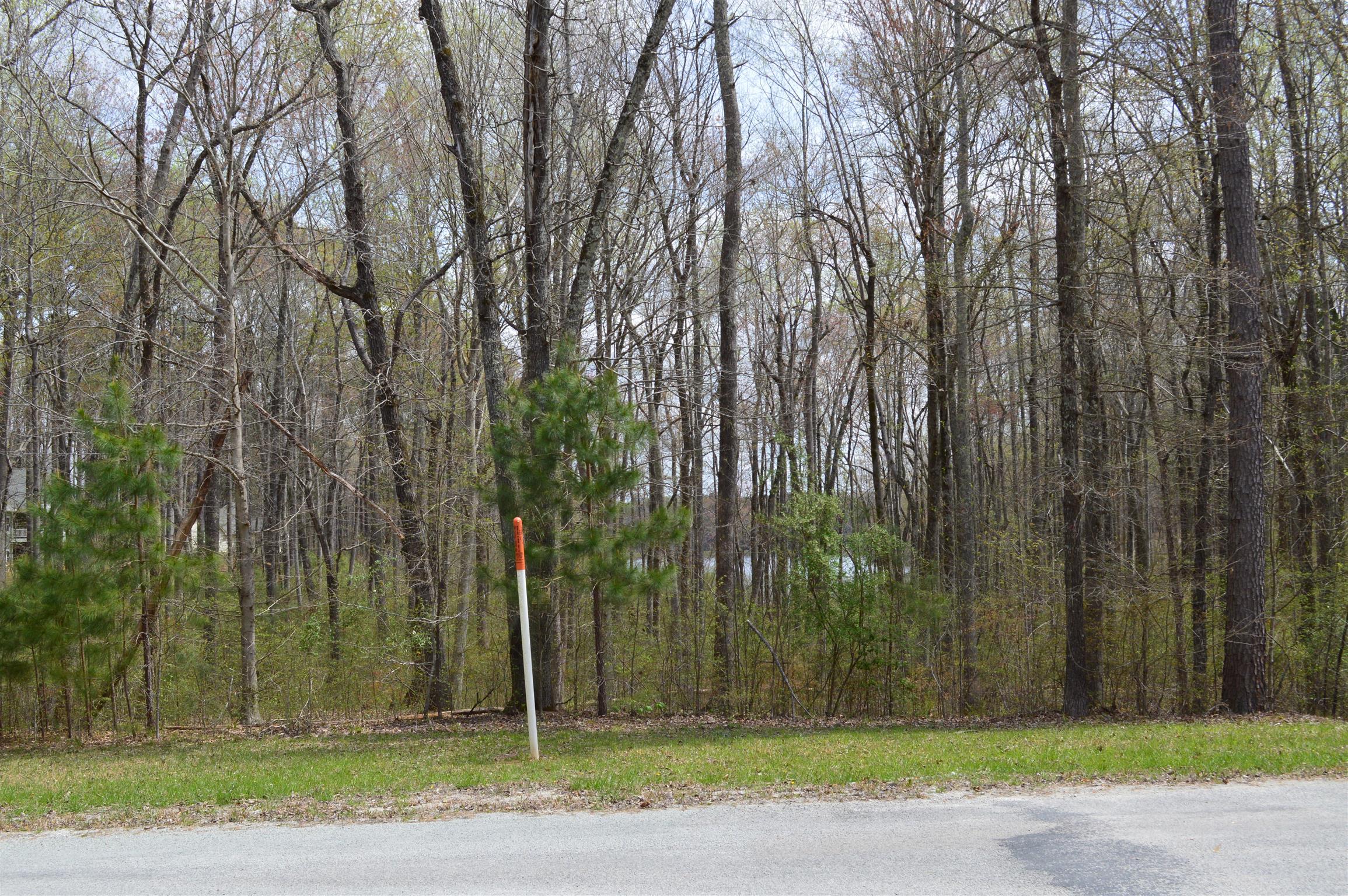 341 Excalibur Trl, Cedar Grove, TN 38321 - Cedar Grove, TN real estate listing