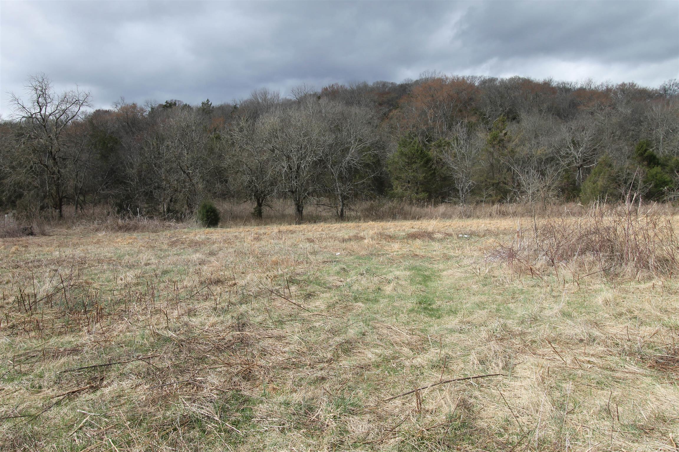 44 Opossum Hollow Rd, Gordonsville, TN 38563 - Gordonsville, TN real estate listing