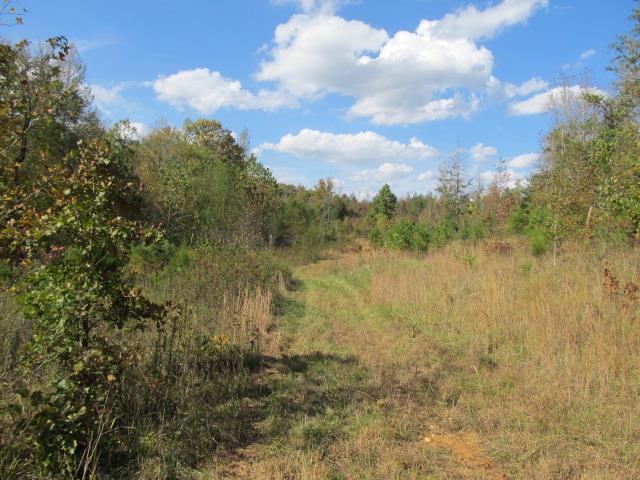 0 Dude Dr, Savannah, TN 38372 - Savannah, TN real estate listing