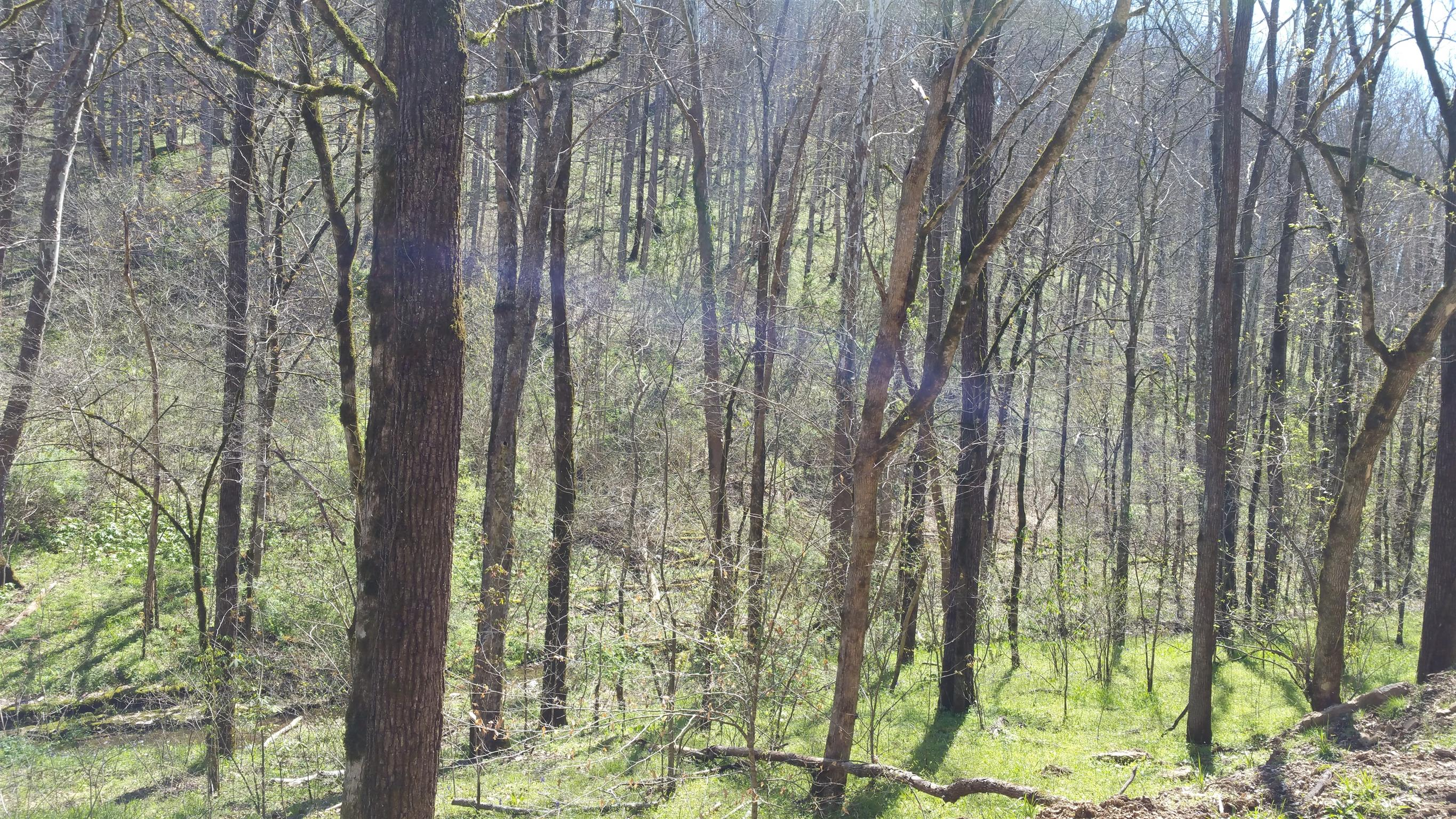 11370 Indian Creek Rd, Baxter, TN 38544 - Baxter, TN real estate listing