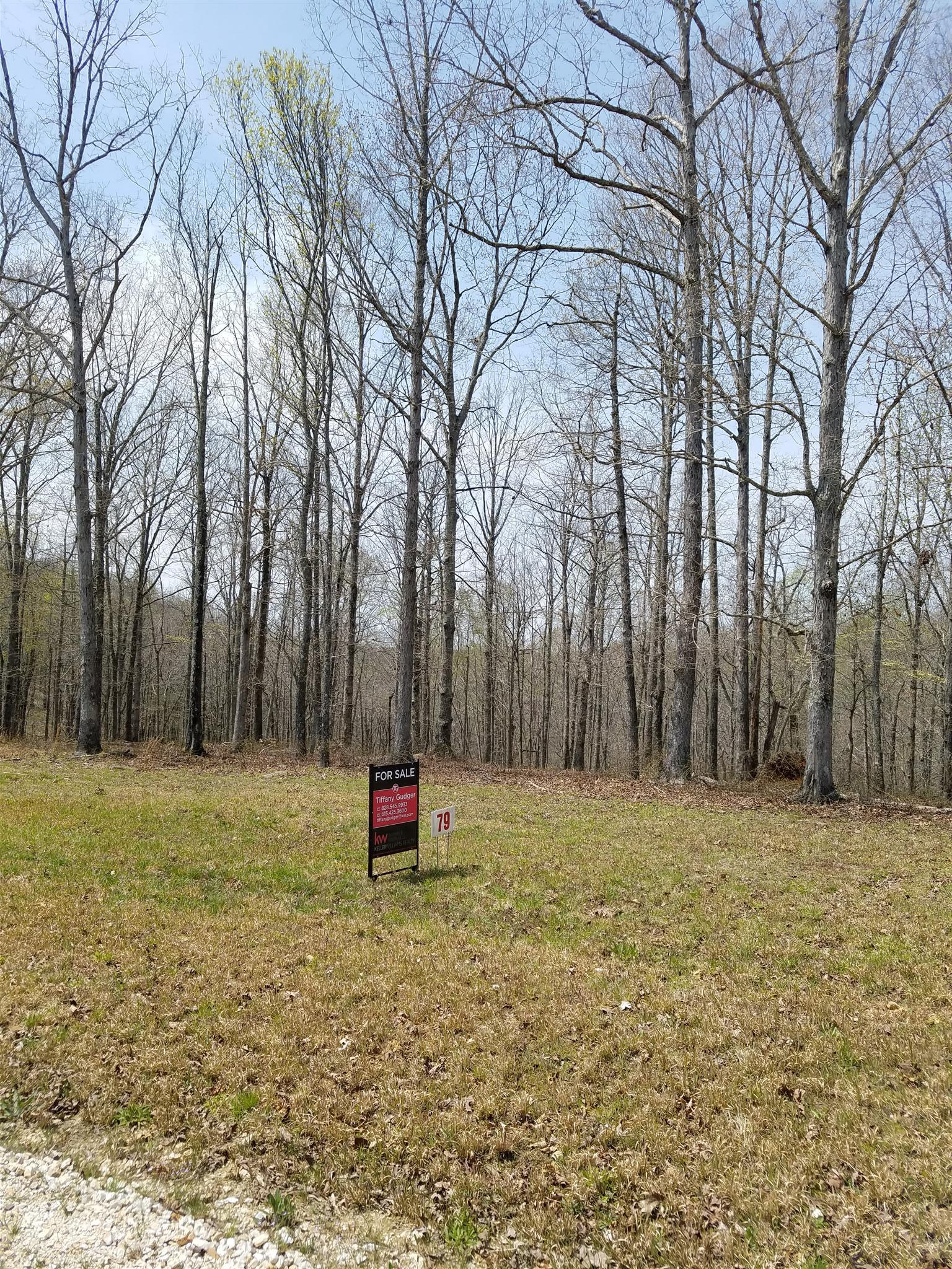 0 Three Rivers Dr Lot #79, Hurricane Mills, TN 37078 - Hurricane Mills, TN real estate listing