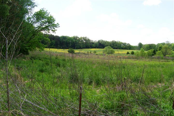 855 Wood Rd, Walling, TN 38587 - Walling, TN real estate listing