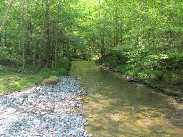 0 Catheys Creek Rd, Hampshire, TN 38461 - Hampshire, TN real estate listing