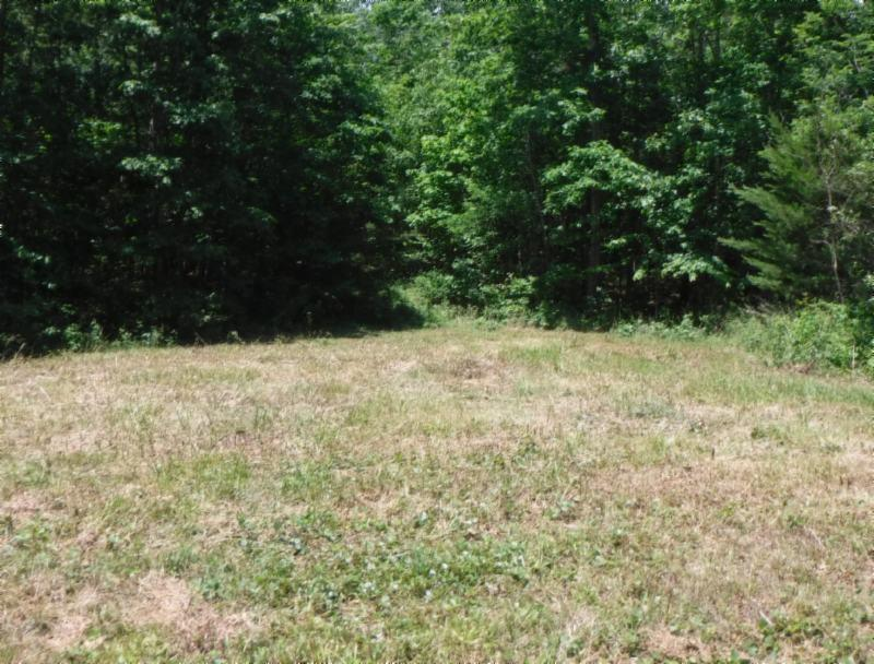 7 .53 Ac. Big Piney Loop, Wilder, TN 38589 - Wilder, TN real estate listing