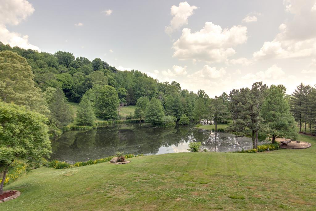 393 Jones Rd, Pulaski, TN 38478 - Pulaski, TN real estate listing
