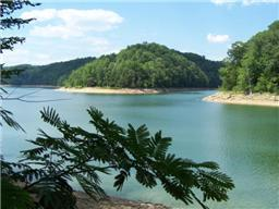 276 Perry Thurman Rd, Smithville, TN 37166 - Smithville, TN real estate listing