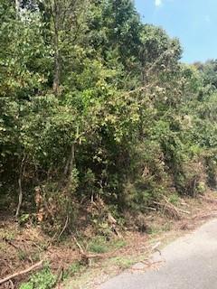 0 Waterwalk Lot 67 Property Photo - Smithville, TN real estate listing