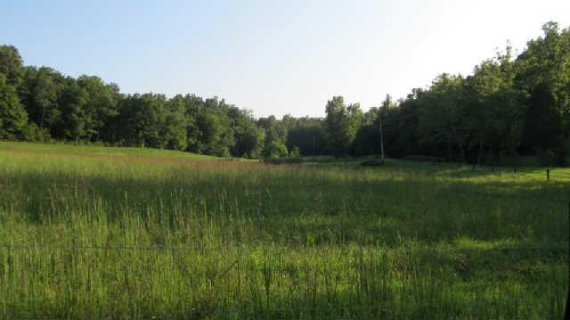 0 Joes Branch Rd, Centerville, TN 37033 - Centerville, TN real estate listing