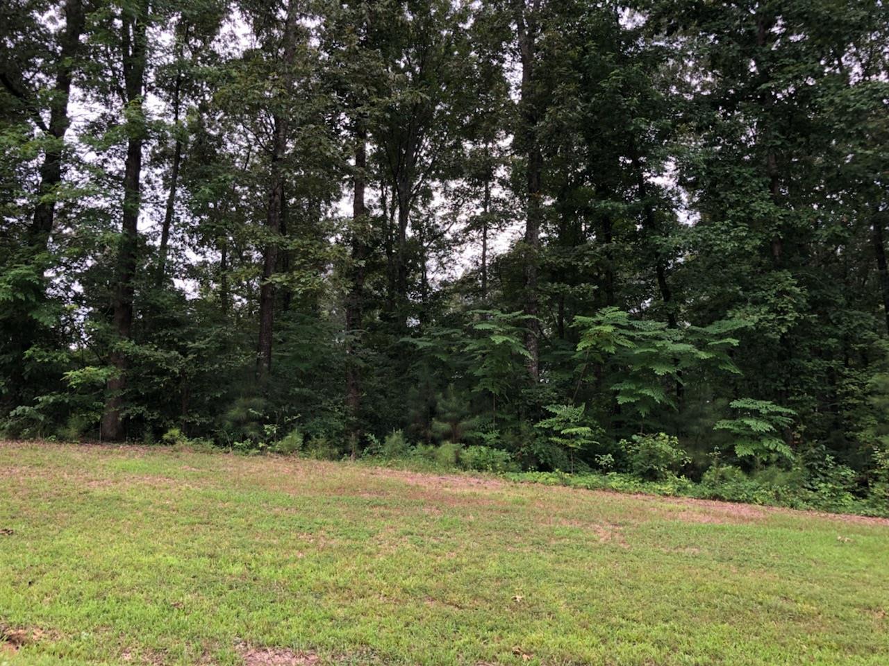 45 Arrowhead Pt, Cedar Grove, TN 38321 - Cedar Grove, TN real estate listing