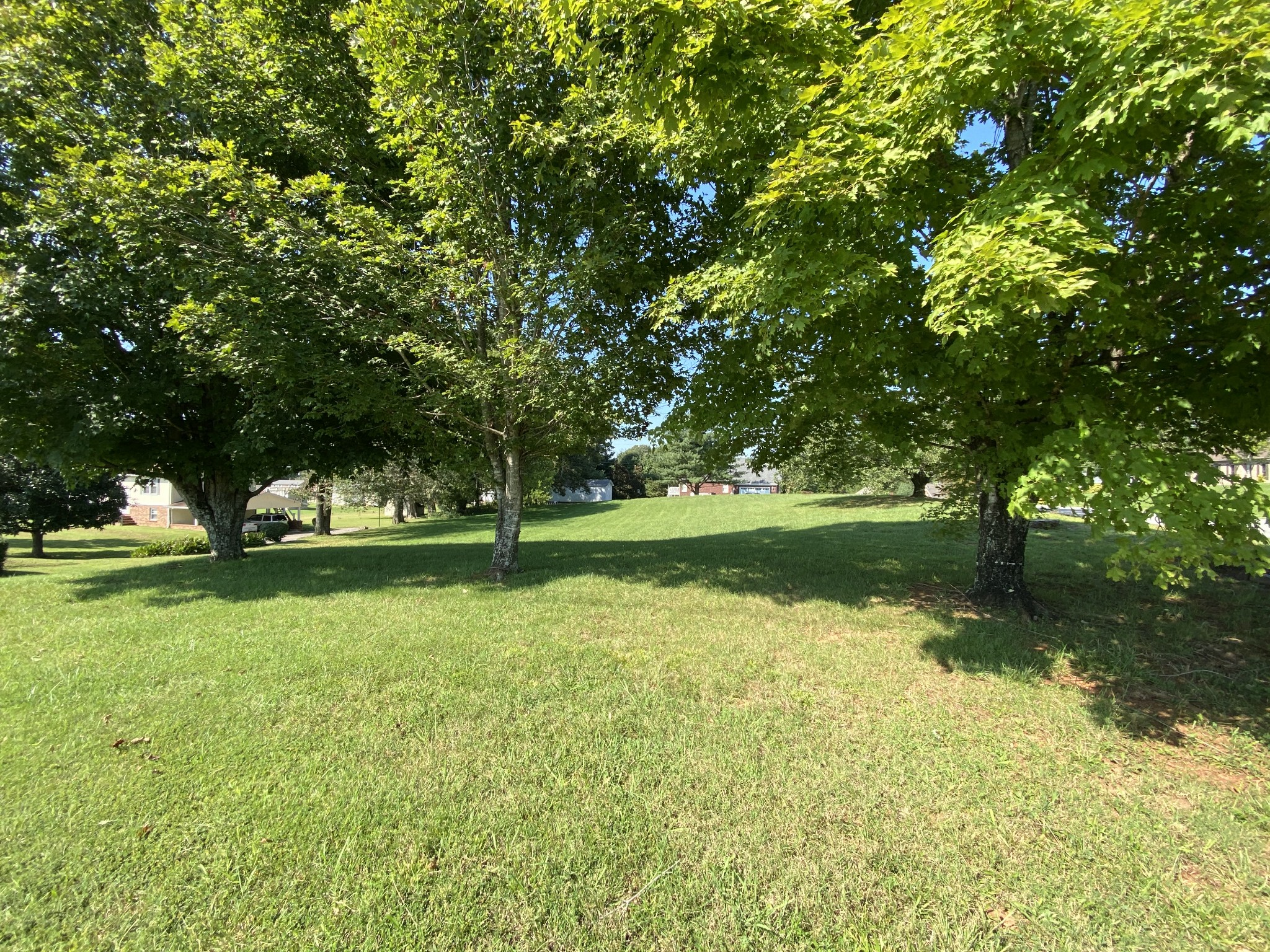 0 Travis Trl Property Photo - Mc Minnville, TN real estate listing