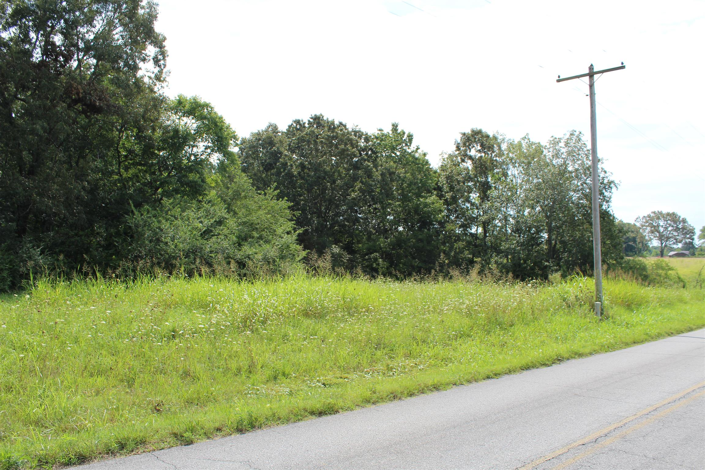 0 Revilo Road, Leoma, TN 38468 - Leoma, TN real estate listing