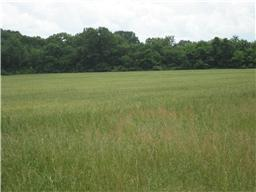 1 Tom Patton Rd Property Photo - Lyles, TN real estate listing