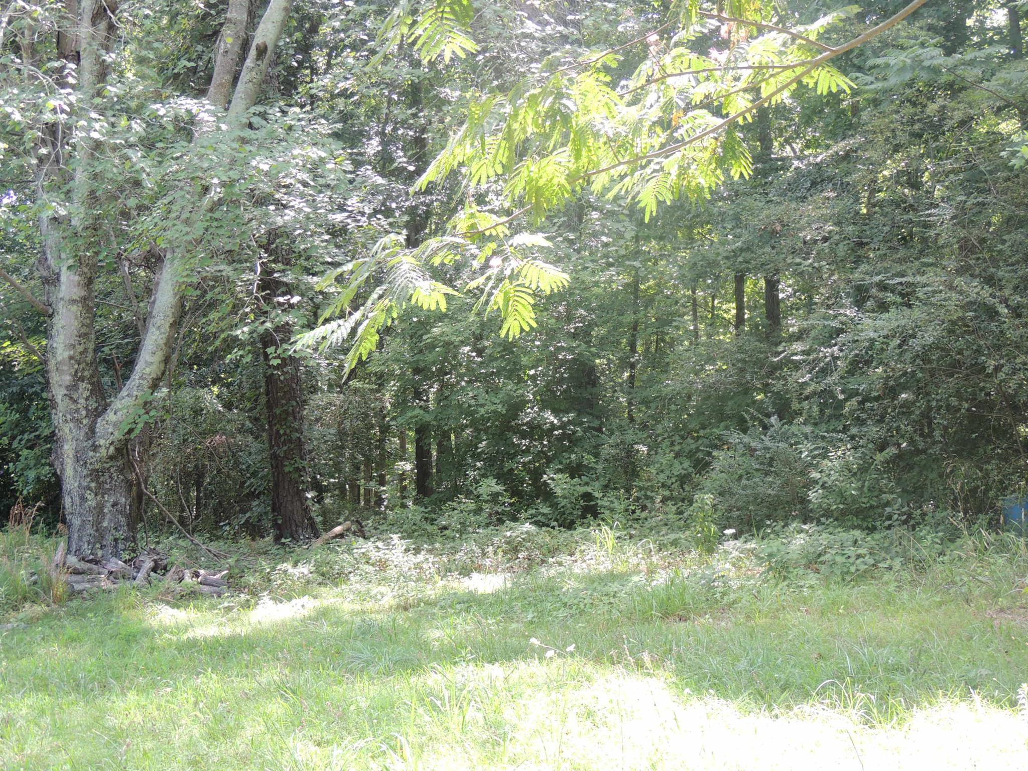 7816 Oscar Green Rd, Primm Springs, TN 38476 - Primm Springs, TN real estate listing