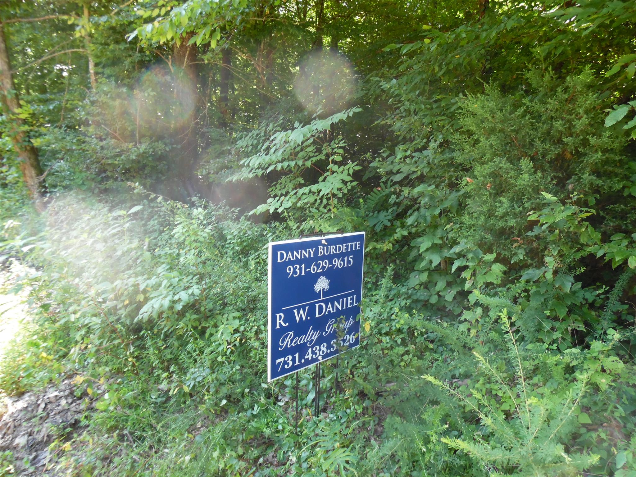 0 WATER FALL CREEK RD, Collinwood, TN 38450 - Collinwood, TN real estate listing