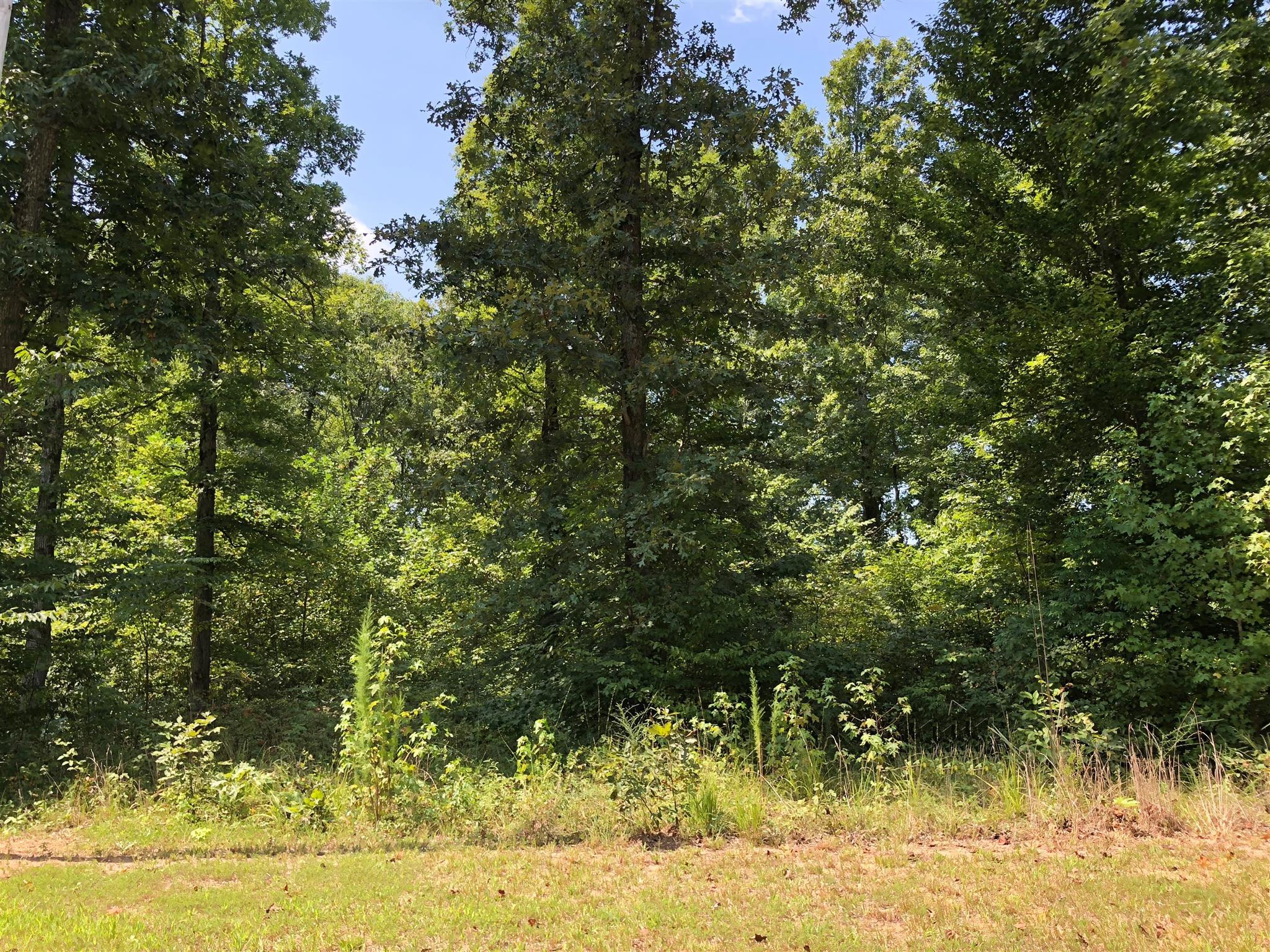 1240 Strike King Dr, Cedar Grove, TN 38321 - Cedar Grove, TN real estate listing