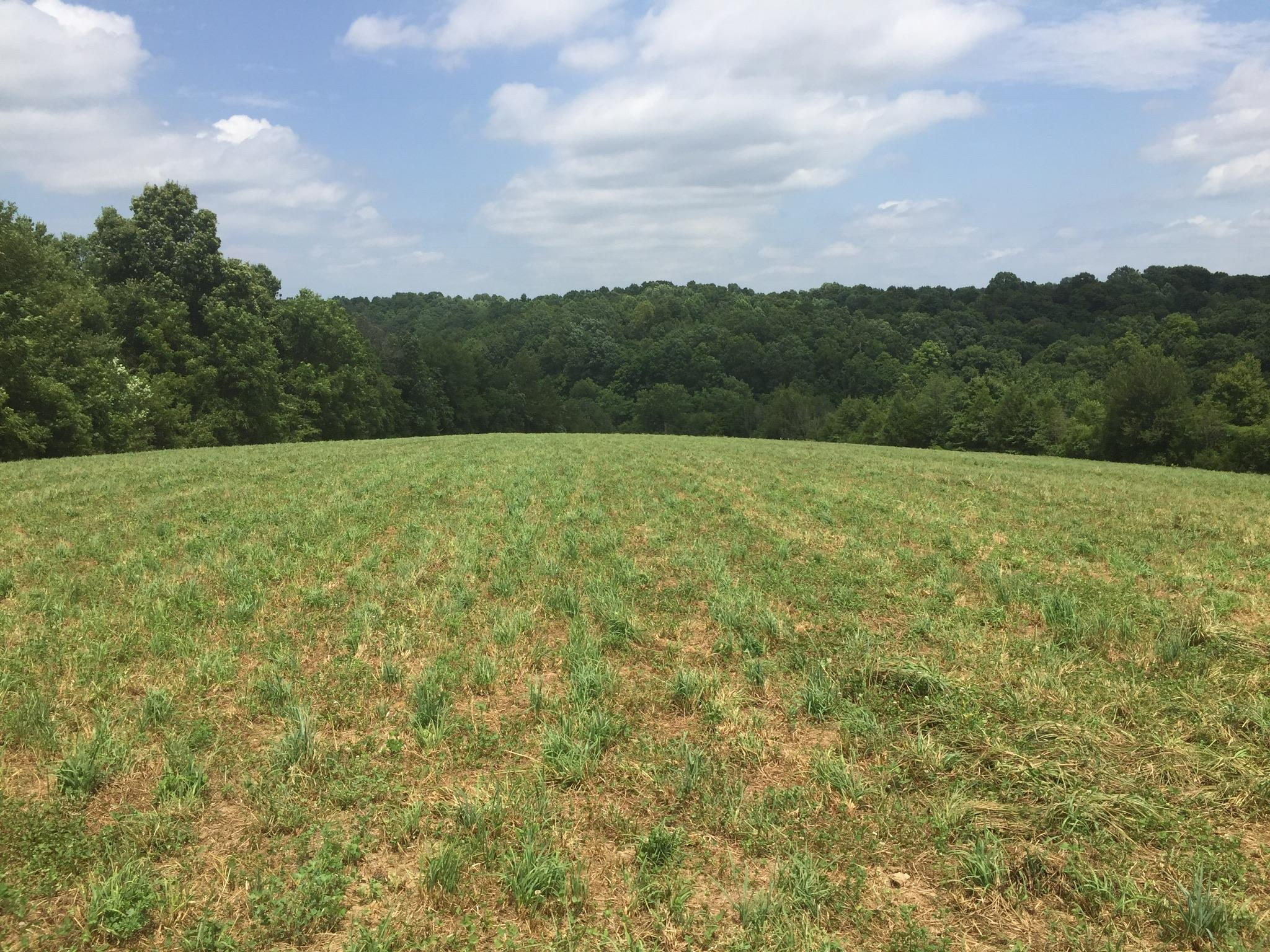 7289 Hwy 31E Property Photo - Westmoreland, TN real estate listing