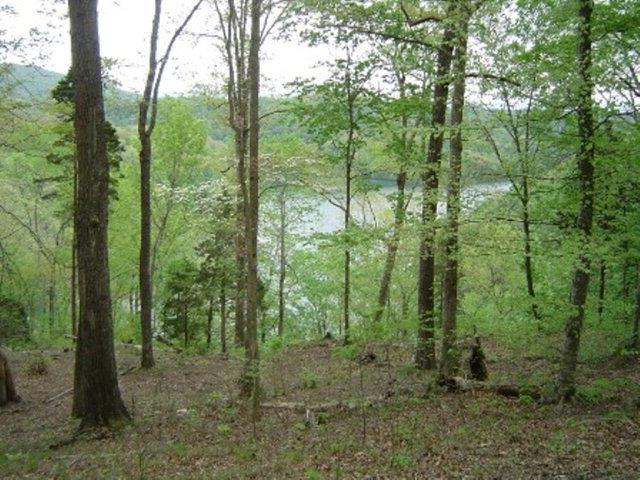 8928 Faix Road Property Photo - Byrdstown, TN real estate listing
