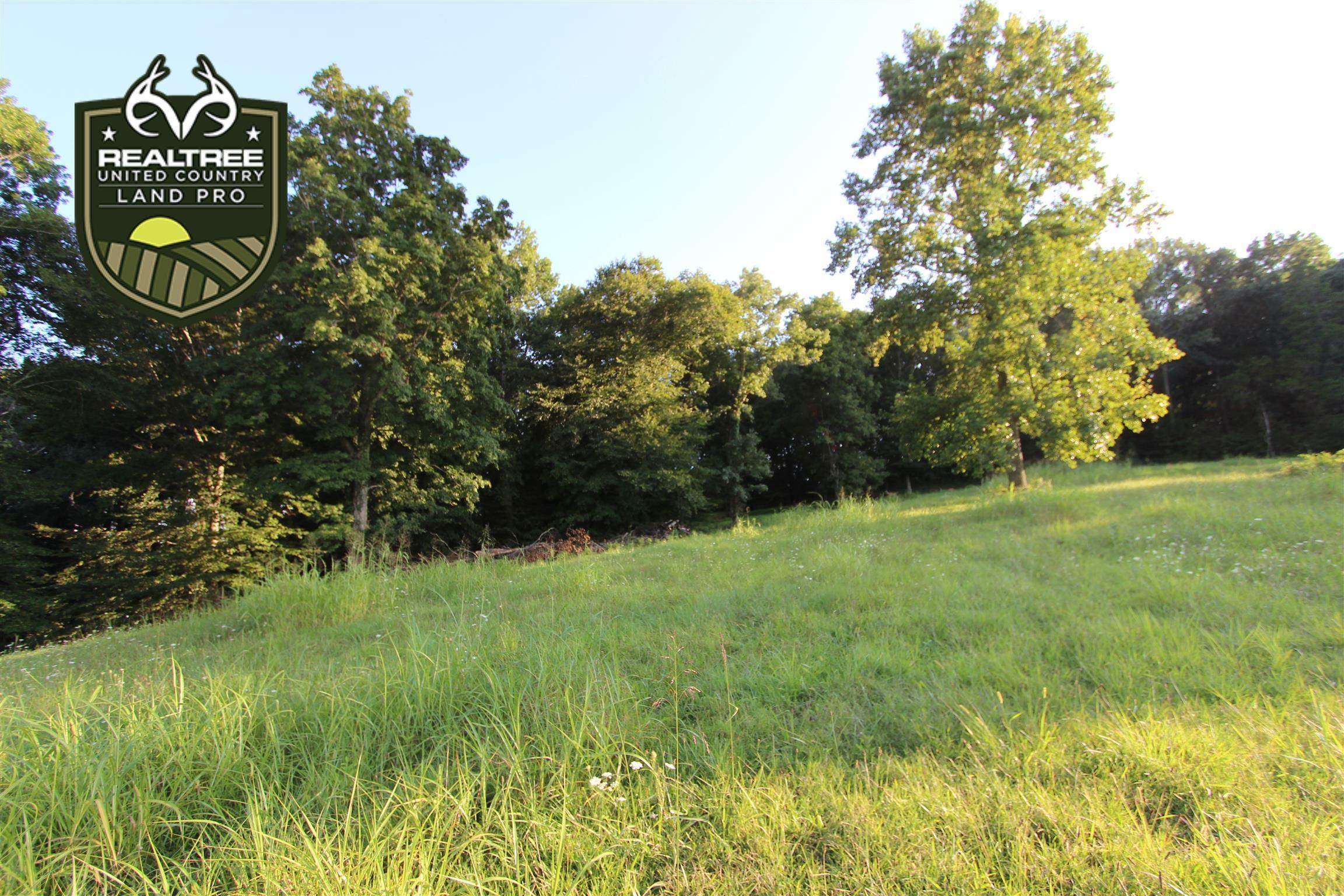 1 Columbia Hwy, Lynnville, TN 38472 - Lynnville, TN real estate listing