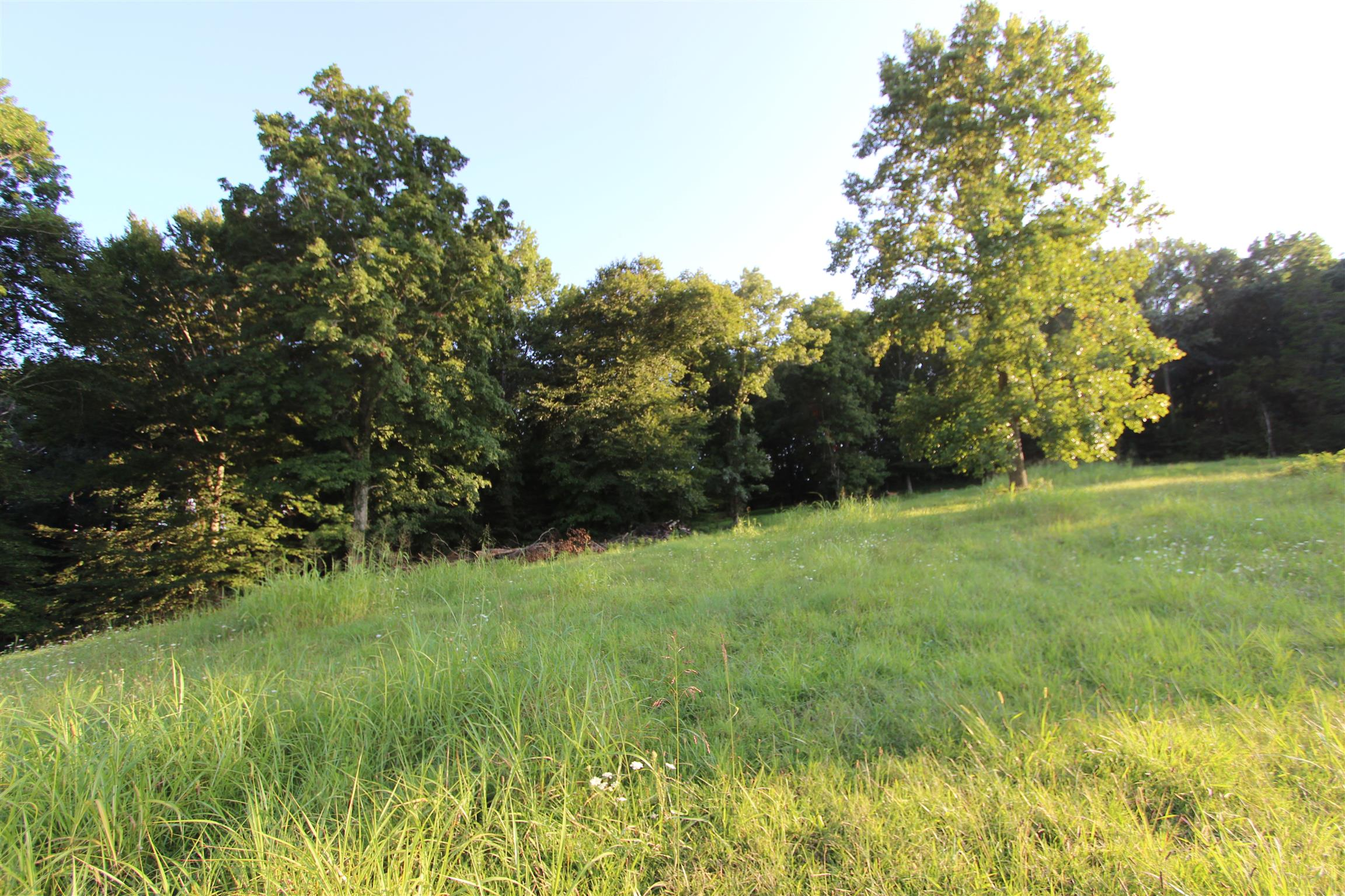 1 Columbia Hwy, Lynnville, TN 38472 - Lynnville, TN real estate listing