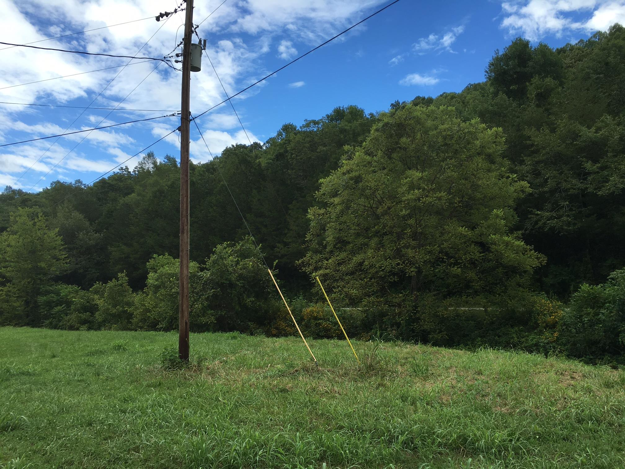 475 Halls Branch Rd, Pleasant Shade, TN 37145 - Pleasant Shade, TN real estate listing