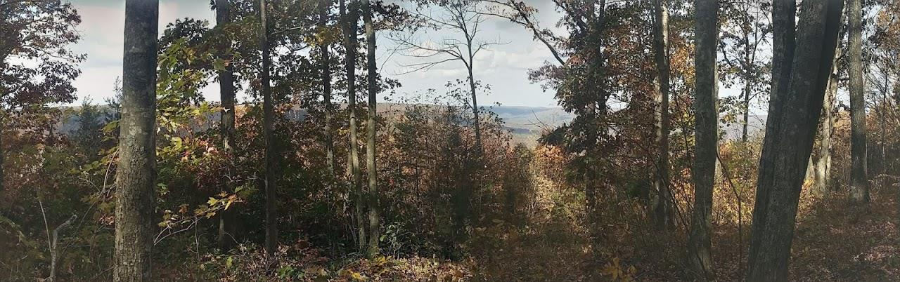 484 Greenbriar Overlook Dr Property Photo - South Pittsburg, TN real estate listing