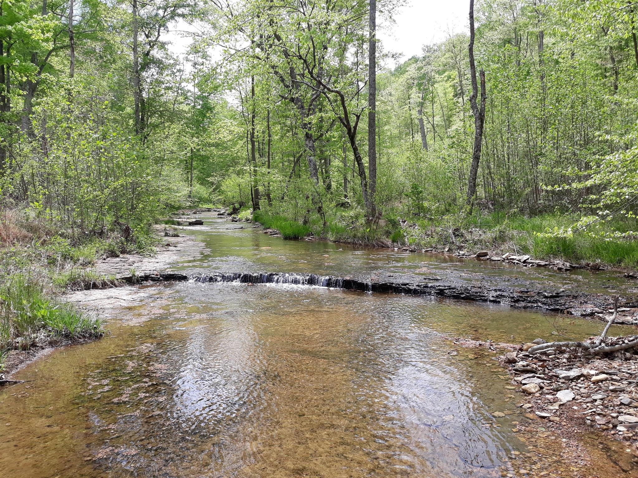 0 Old Sams Creek Rd-Lot 568, Pegram, TN 37143 - Pegram, TN real estate listing