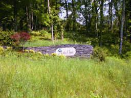 45 Harbor Pointe Dr Property Photo - Silver Point, TN real estate listing