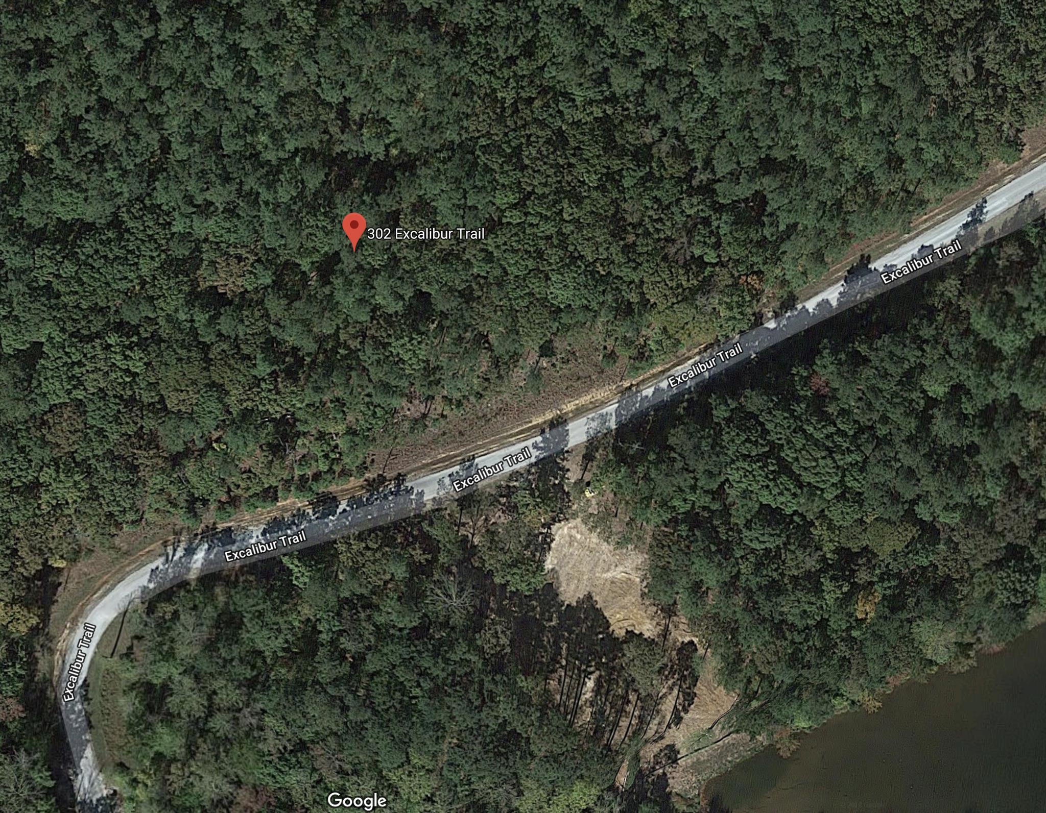 302 Excalibur Trail, Cedar Grove, TN 38321 - Cedar Grove, TN real estate listing