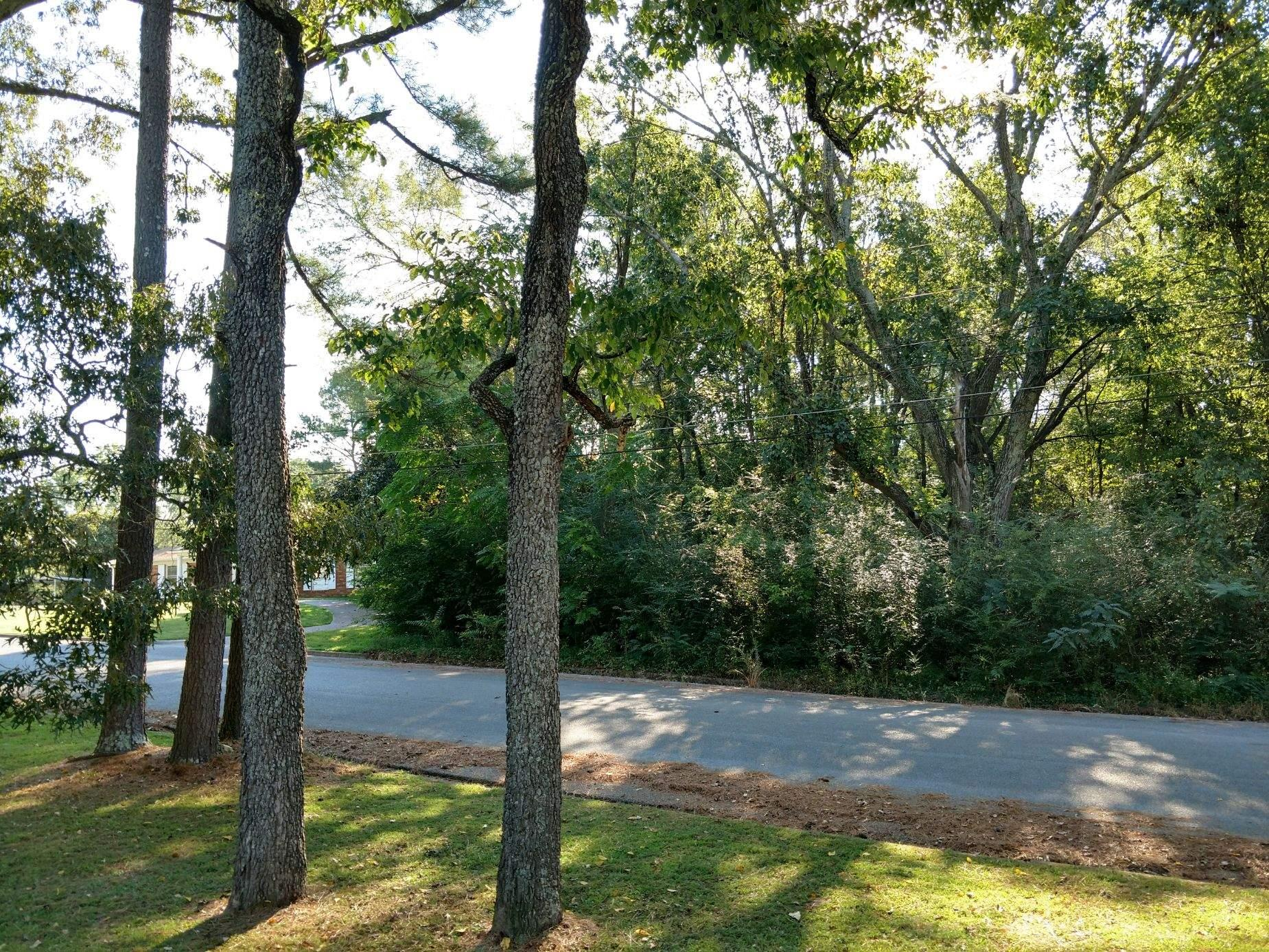 0 Virginia Dr, Lawrenceburg, TN 38464 - Lawrenceburg, TN real estate listing