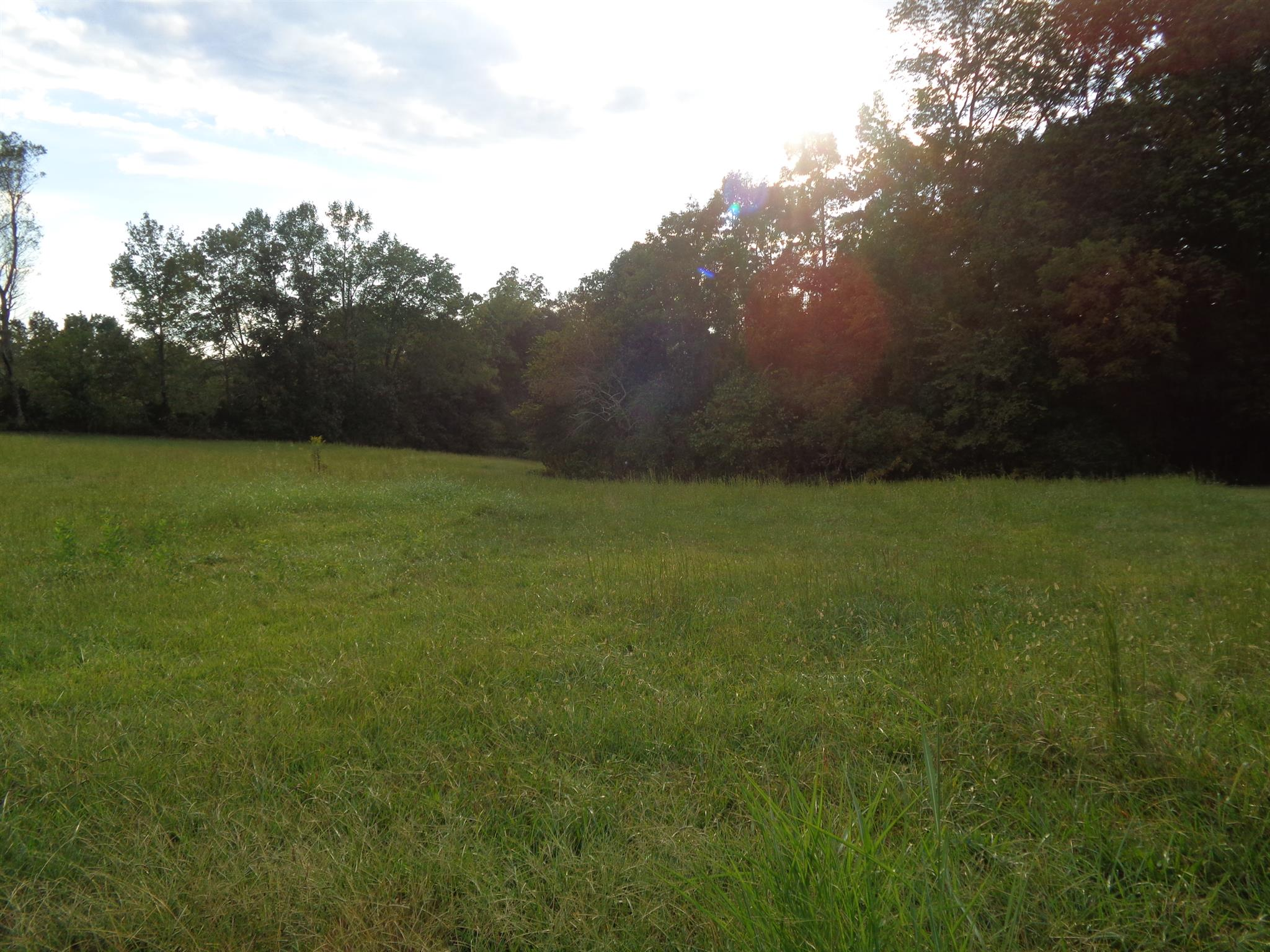 0 Mary Alice Rd Property Photo - Leoma, TN real estate listing
