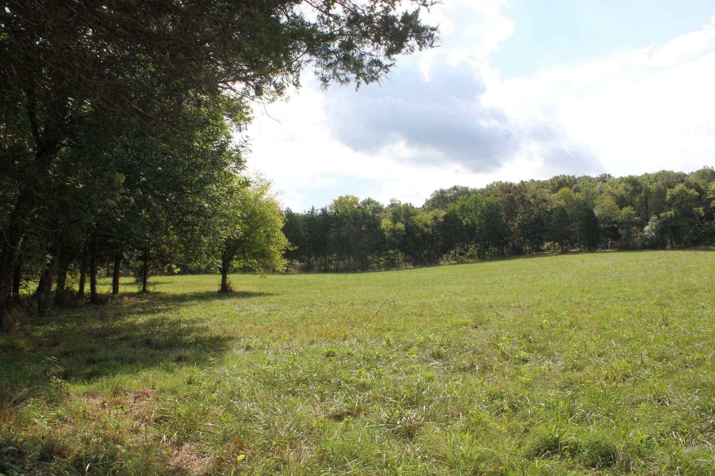 10658 Halls Hill Pike, Milton, TN 37118 - Milton, TN real estate listing