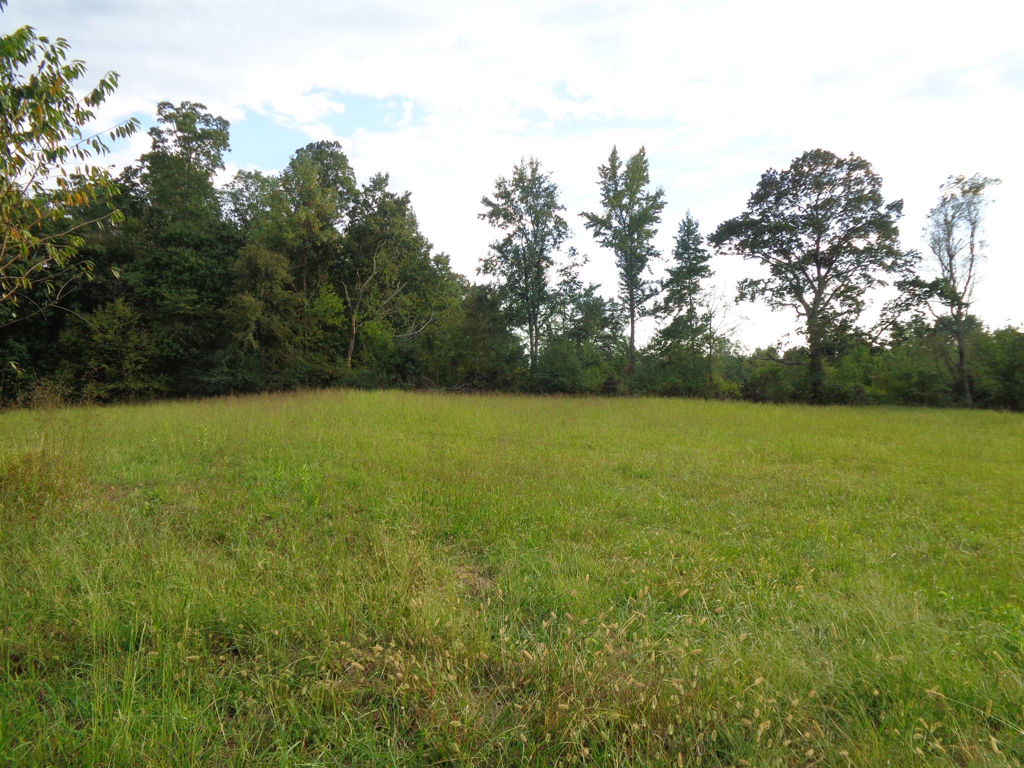 0 Mary Alice Rd, Leoma, TN 38468 - Leoma, TN real estate listing