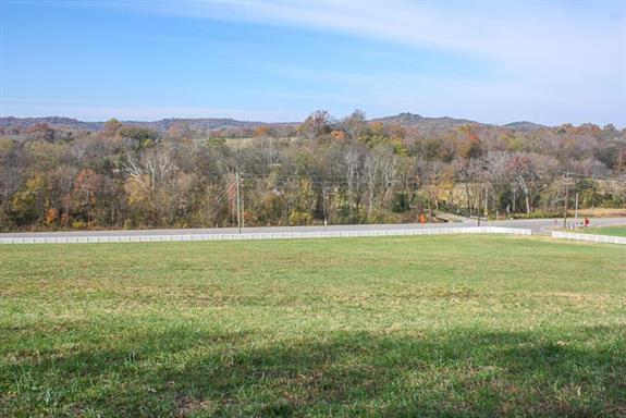 9094 Horton Hwy.- #2, College Grove, TN 37046 - College Grove, TN real estate listing