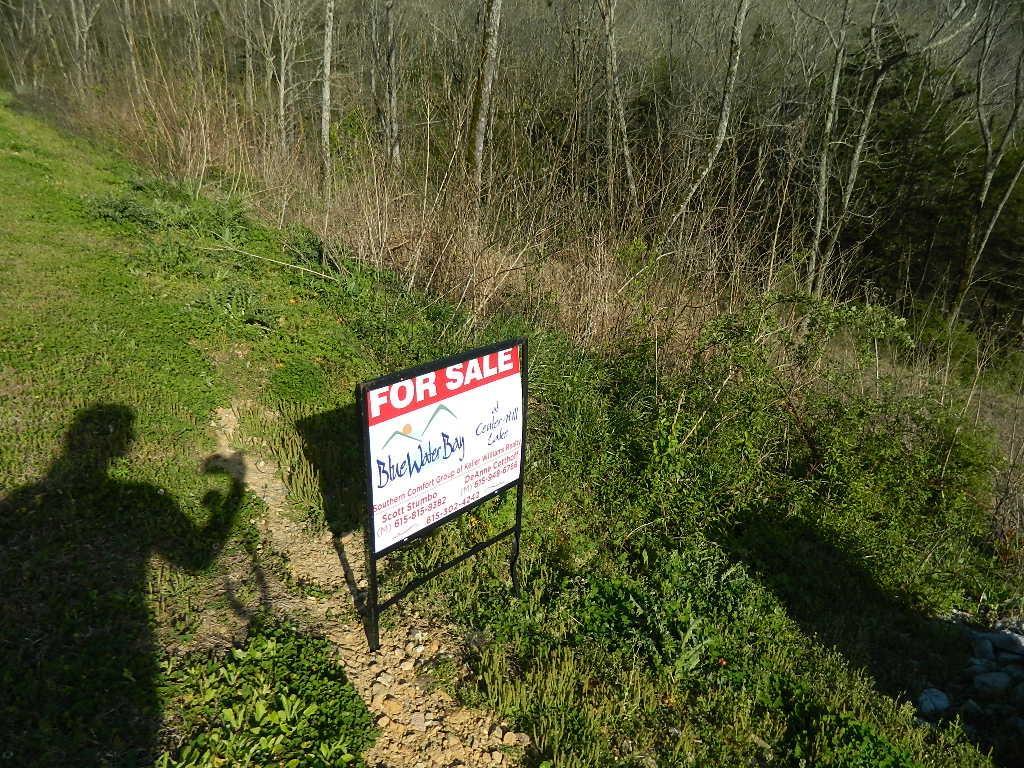 203 Sandgate Drive, Smithville, TN 37166 - Smithville, TN real estate listing