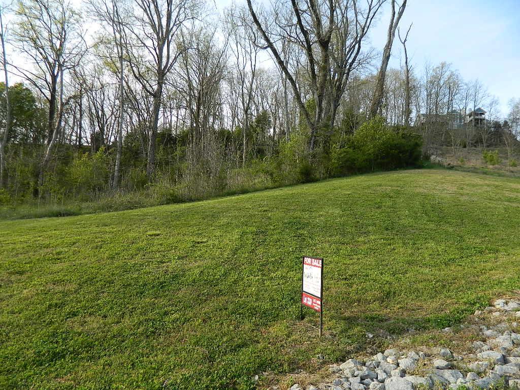 330 Sandgate Court, Smithville, TN 37166 - Smithville, TN real estate listing