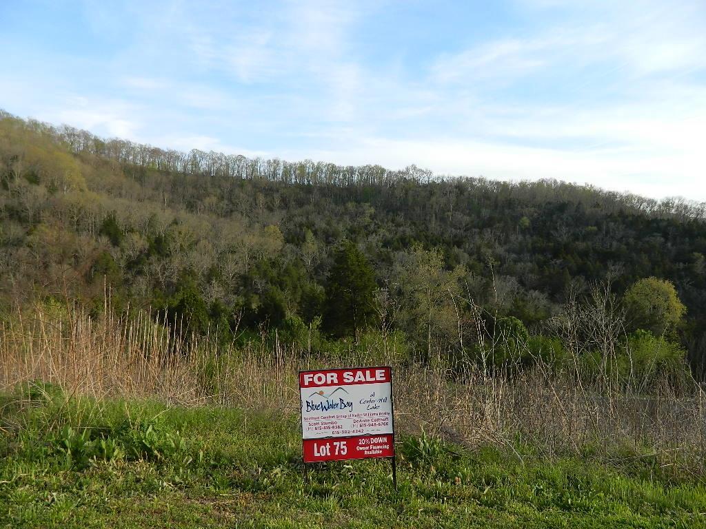 75 Sandgate Court, Smithville, TN 37166 - Smithville, TN real estate listing