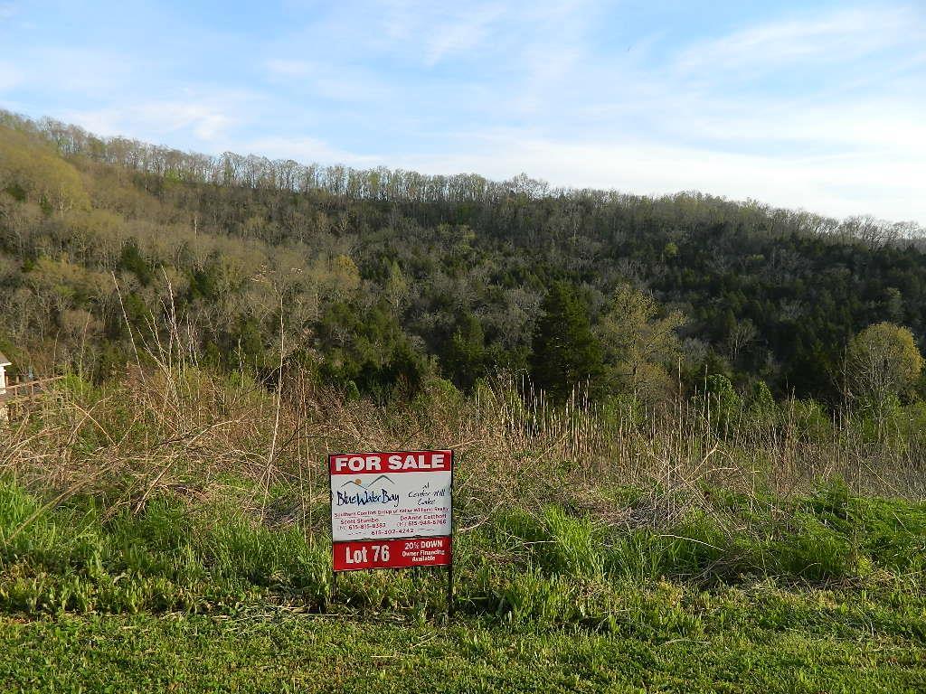 76 Sandgate Court, Smithville, TN 37166 - Smithville, TN real estate listing