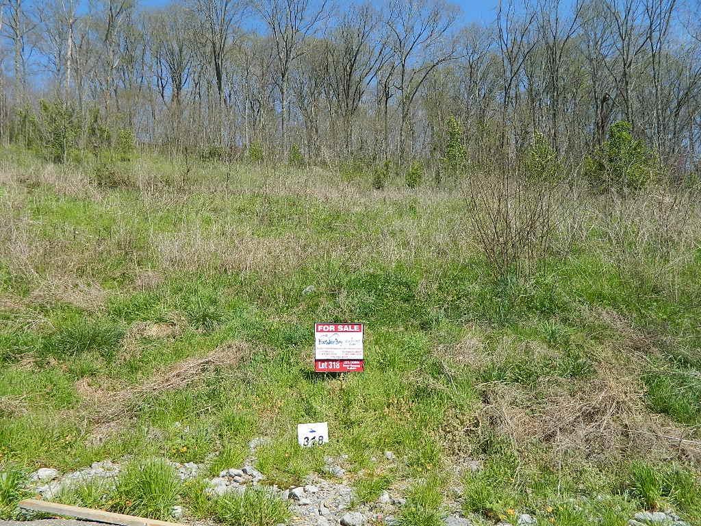318 Lancing Ct., Smithville, TN 37166 - Smithville, TN real estate listing