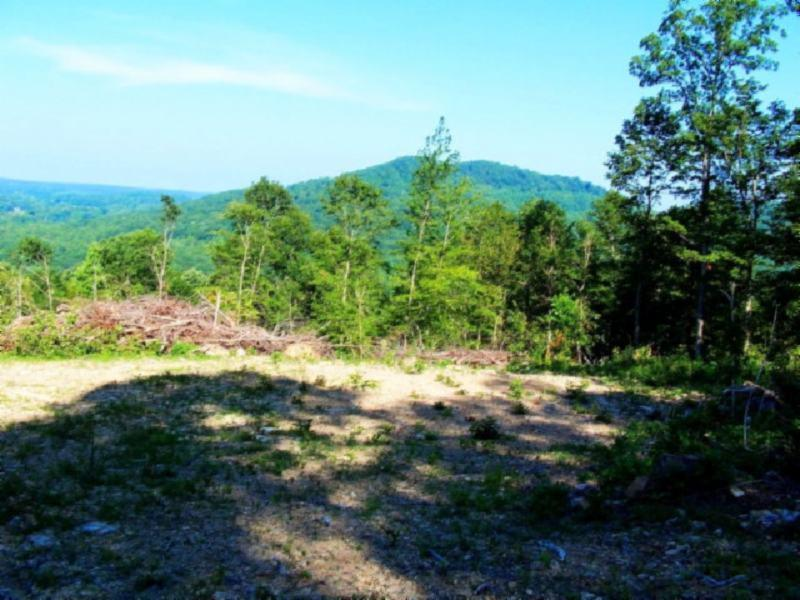 19 .45ac Bear Hollow Ln, Livingston, TN 38570 - Livingston, TN real estate listing