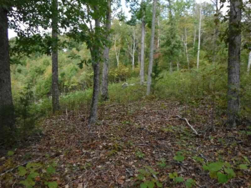 1 .54 Mitchell Ceek Point , Allons, TN 38541 - Allons, TN real estate listing