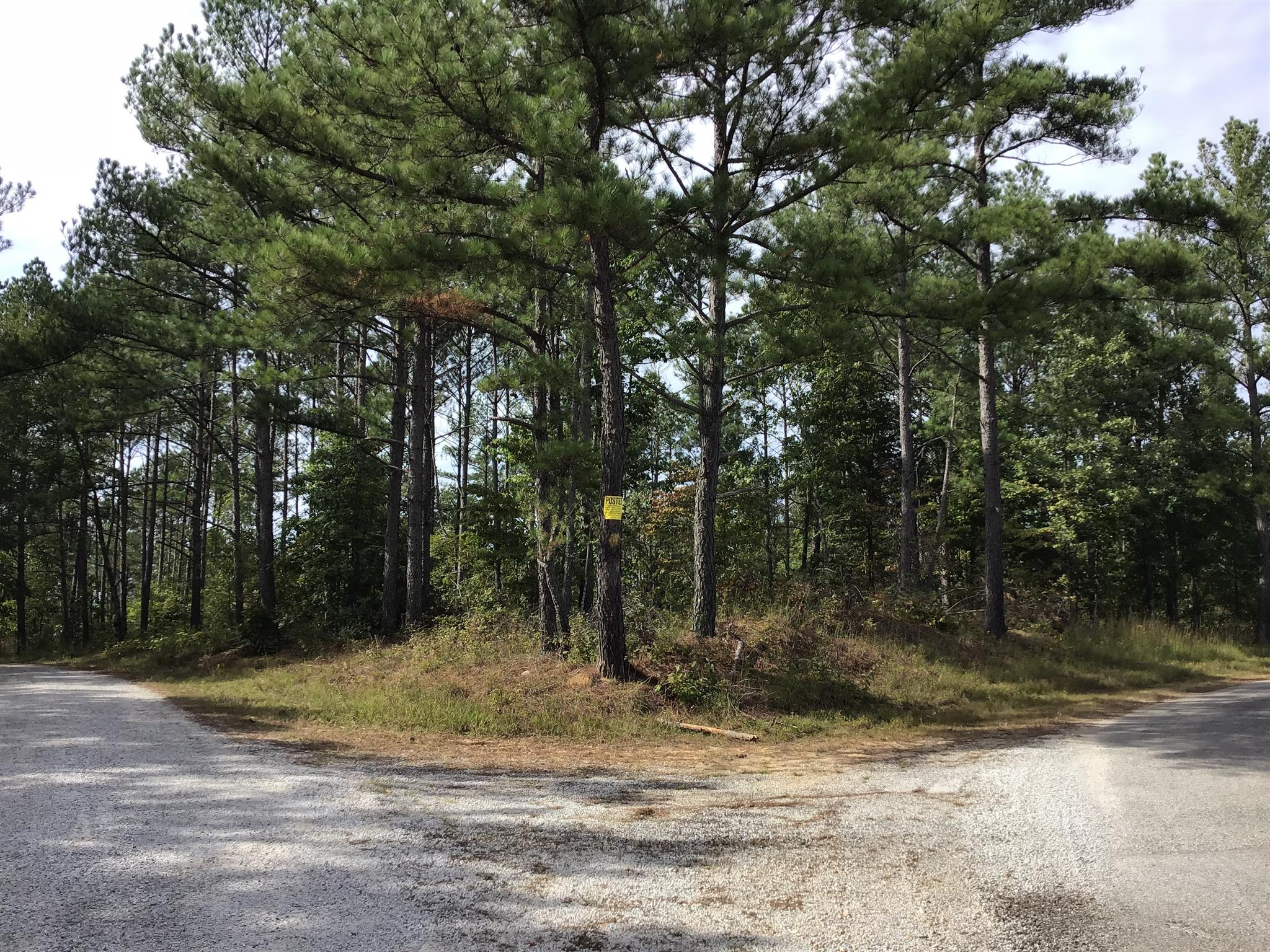 0 Carter Hollow Rd, Linden, TN 37096 - Linden, TN real estate listing